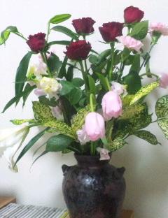で、きょうのお花