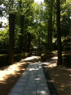 大田黒公園  お庭
